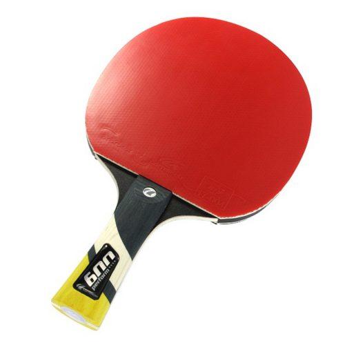 Cornilleau Tischtennisschläger Perform 600